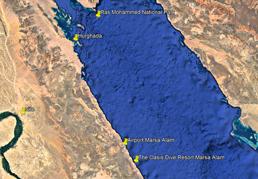 Faq Sinai Divers